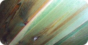 Färg från antimögelbehandling i krypgrund