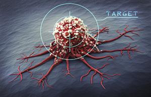 Mediciner ger antimykotisk verkan och effekt mot cancer i ett