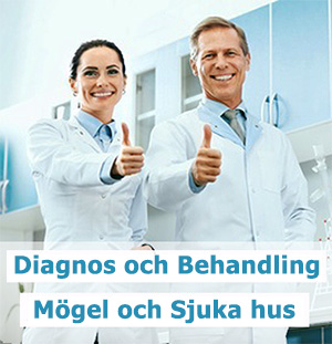 Diagnos och behandling av mögel och sjuka hus