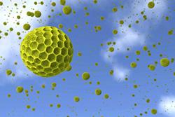 Pollen ger allergi genom gifter som mögelgift och bakteriegift