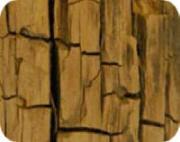 Mjukröta gör att trä spricker upp, mjuknar och vid torka blir sprött