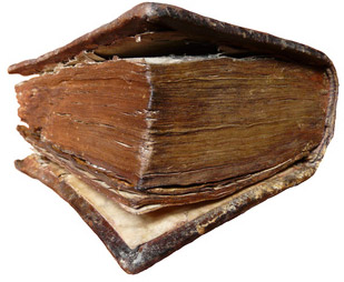 Mögel kan finnas på gammal bok som denna bibel