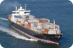 Import via båt och flyg ser till att mögel bildas