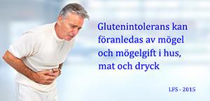 Glutenintolerans kan föranledas av mögel och mögelgift i hus, mat och dryck