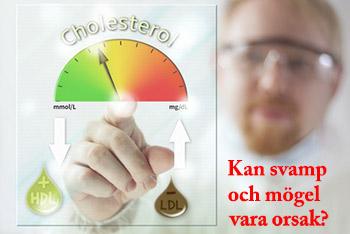 Mögel kan leda till högt kolesterol