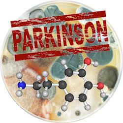 Mögel i petriskål, ordet parkinson och en neuron
