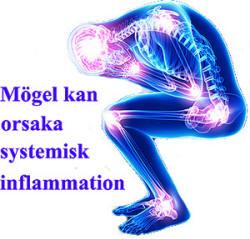 kronisk inflammation i kroppen