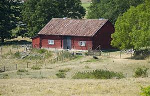 Gamla hus kunde också drabbas av mögel och husröta