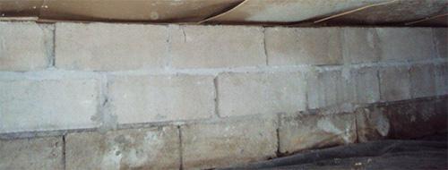 Är det vitmögel eller salt-kalkutfällning på grundmuren i krypgrund