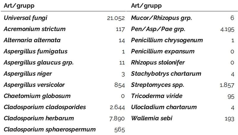 Sporekvivalenter från ett DNA mögeltest, även visande bakterier