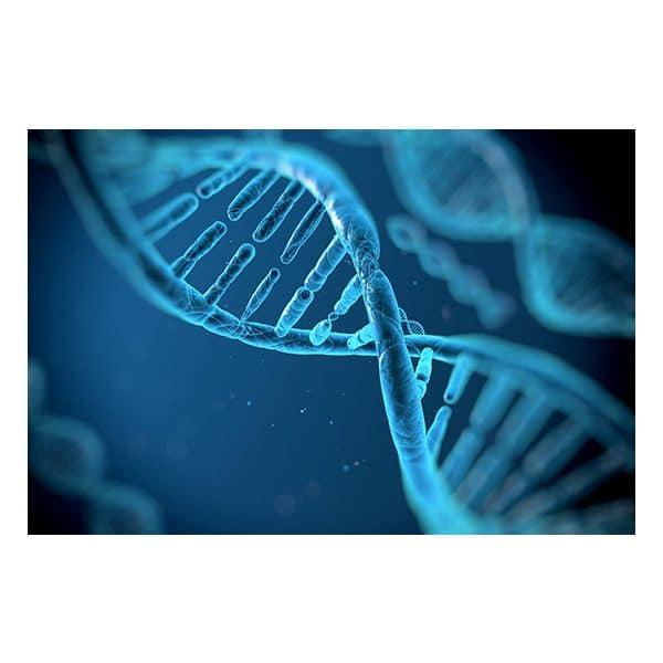 DNA från mögel eller bakterier i hus