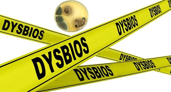 Mögel i hus kan leda till dysbios, invasivt mögelangrepp i mage och tarm. Mögelgift kan finnas i urin.