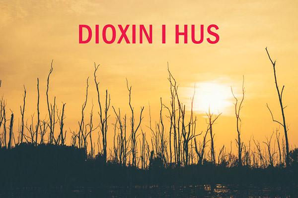 Dioxin i hus, är det vanligt och orsakar exponering hälsoeffekter?